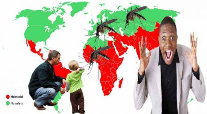 Rimini, donna africana porta la Malaria in città