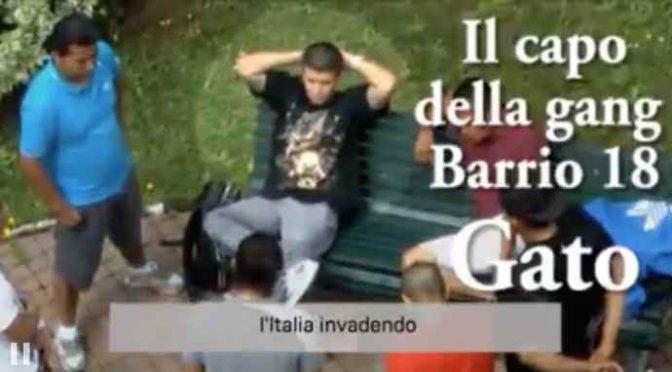 """Le brutali gang sono in Italia: """"Vi stiamo invadendo"""" – VIDEO"""