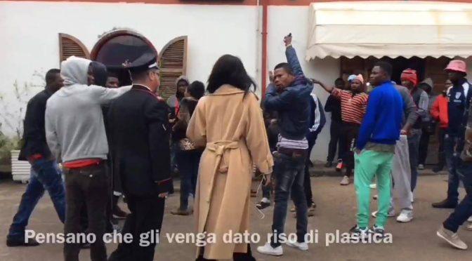 """La protesta del riso, Profughi lo buttano: """"E' di plastica"""" – VIDEO"""