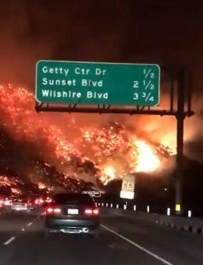 Los Angeles brucia, incendio circonda la città