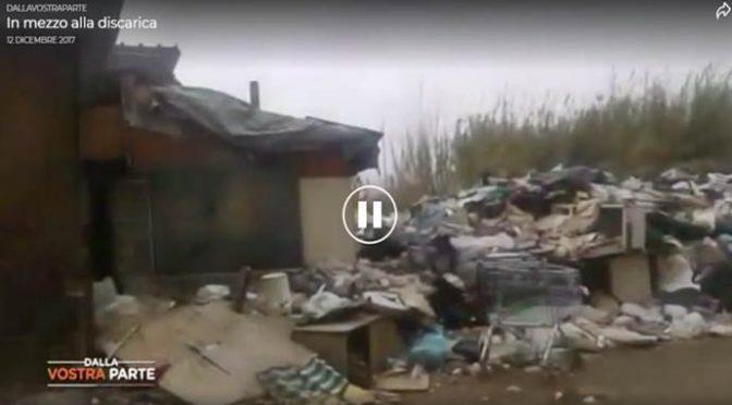 Roma: famiglie italiane vivono in discarica – VIDEO CHOC