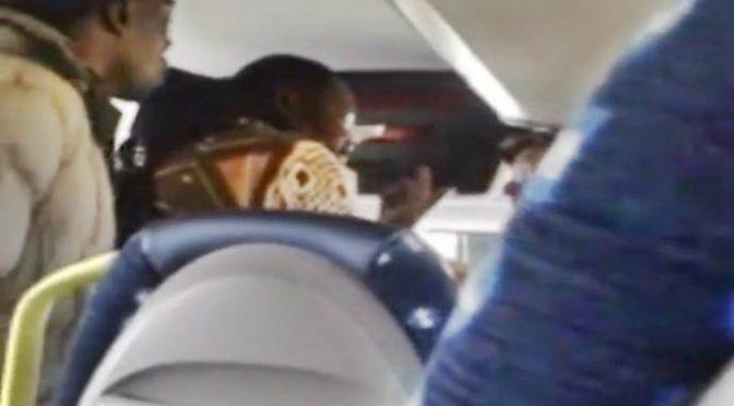 """""""Chiedere il biglietto è razzismo"""": immigrato blocca bus"""