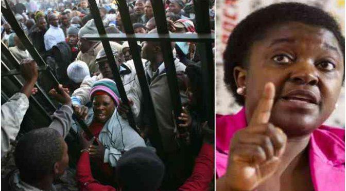 """Kyenge contro Salvini: """"Ci vuole chiudere in gabbia"""""""