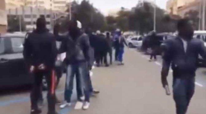 """Profughi ai Carabinieri: """"Non contate un cazzo"""" – VIDEO"""