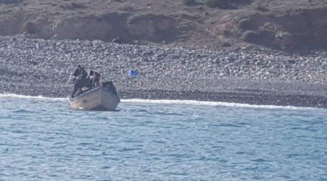 Algerini prendono d'assalto Sardegna, razziano locali appena sbarcano