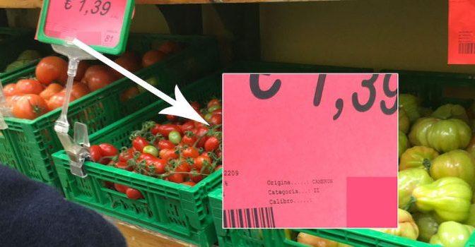 Troppi pomodori africani, quelli italiani marciscono sulle piante