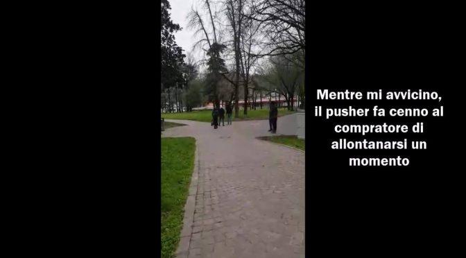 Vicenza, profughi spacciano alla luce del sole – VIDEO