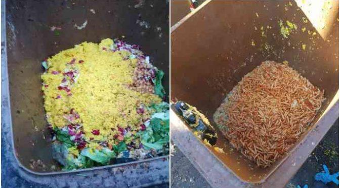 Migranti: pasta gettata a chili nei bidoni, che spreco – VIDEO
