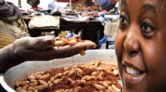 Tassa sugli insetti scatena guerra razziale a casa Kyenge