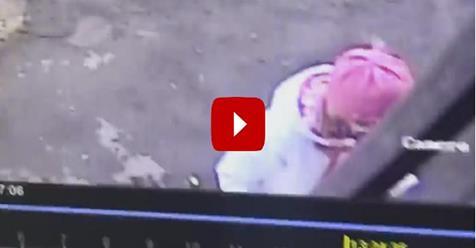 Antifà usa figlioletta per non essere scoperto durante 'blitz' – VIDEO