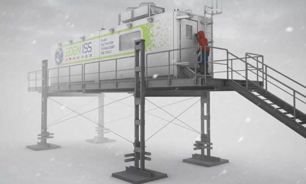 Primo raccolto in Antartide: senza terra, luce né pesticidi