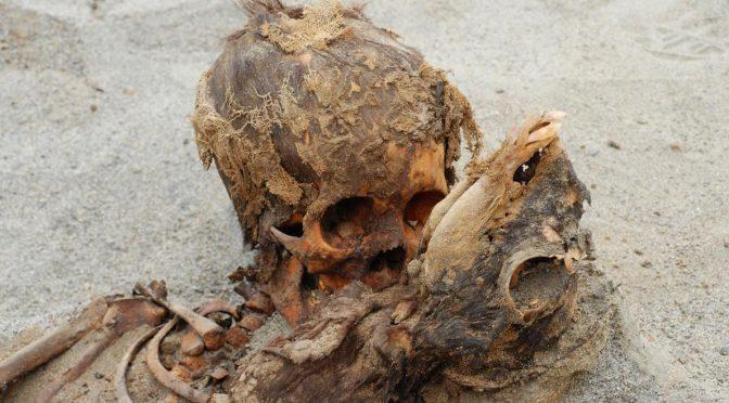 Il più grande sacrificio umano della storia: resti di 140 bambini in Perù – VIDEO