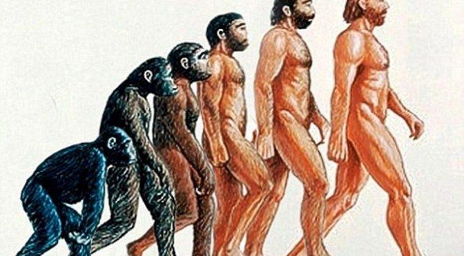 Quel gene che gli africani condividono con gli scimpanzé e noi no