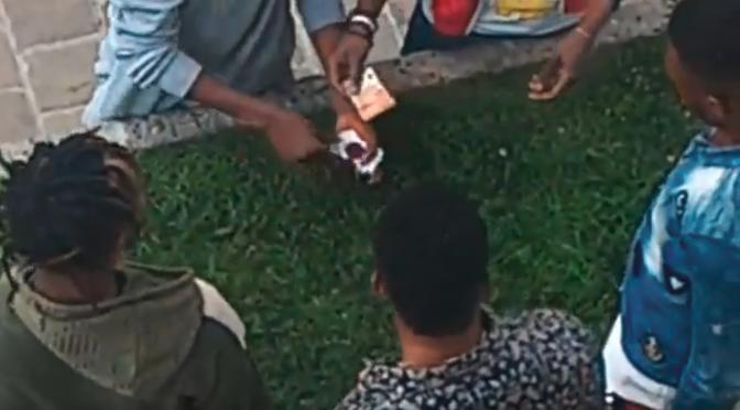 Immigrati si giocano d'azzardo i soldi dello stipendio da profughi – VIDEO