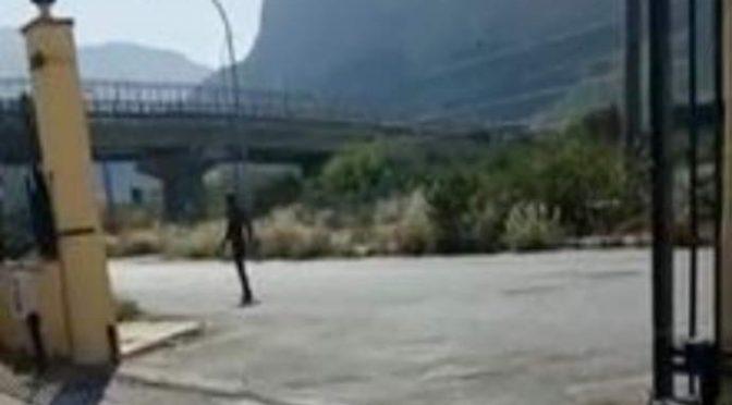 Profugo si aggira nudo per strada – VIDEO