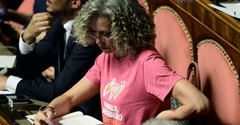 Pagliacciata Cirinnà, trombata dagli elettori: come si presenta al Senato – FOTO
