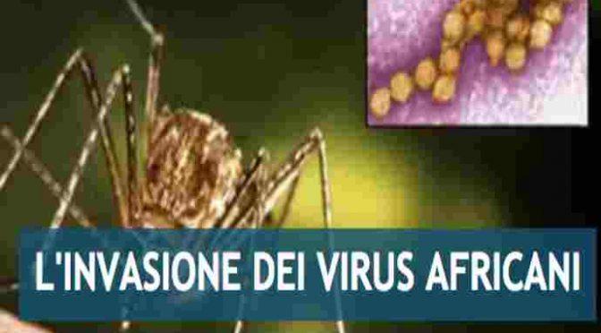 Febbre del Nilo dilaga in Emilia: 18 morti