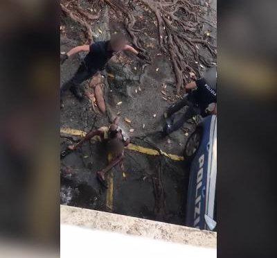 Il migrante è molesto, agenti costretti a 'spruzzarlo' – VIDEO