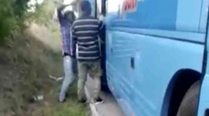 Immigrati pestano passeggero, distruggono bus – VIDEO CHOC