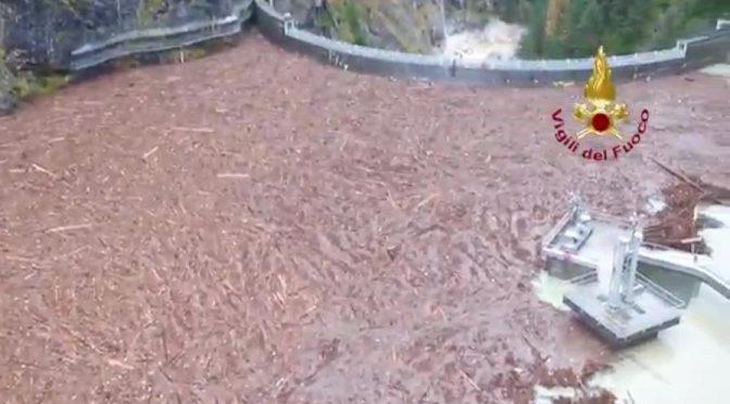 Strage di alberi a Nordest: 14 milioni, diga invasa – VIDEO CHOC