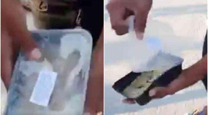 """Profughi gettano il cibo: """"Questo pollo fa schifo"""" – VIDEO"""