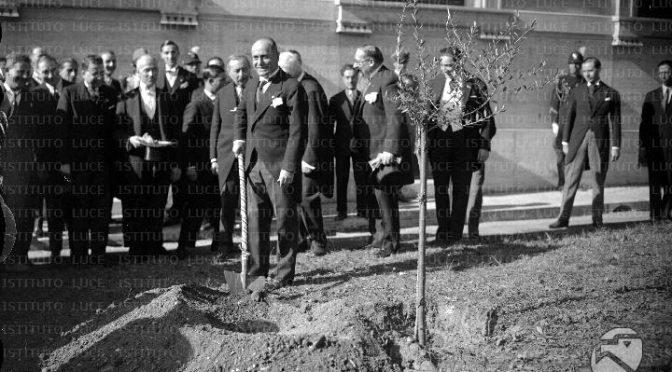 Raggi, alberi che cadono a Roma: colpa del Fascismo