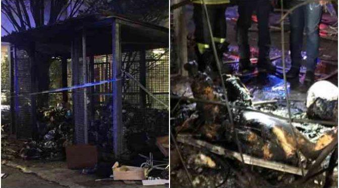 Cadavere mutilano a Milano: arrestati 2 immigrati