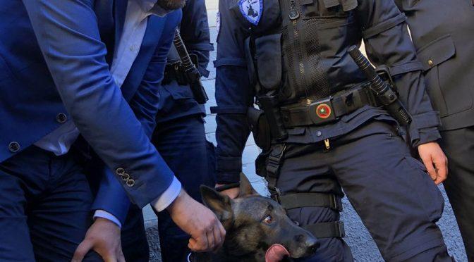 Salvini incontra Narco, il cane 'fascista' che il Pd voleva 'eliminare'