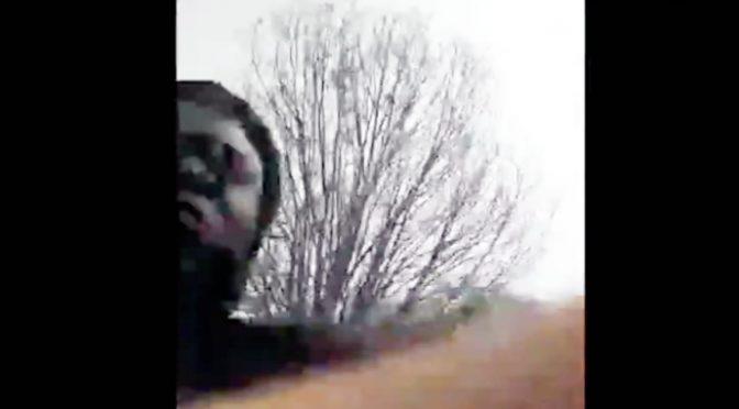 Giornalista pestato da immigrati e preso a sputi – VIDEO