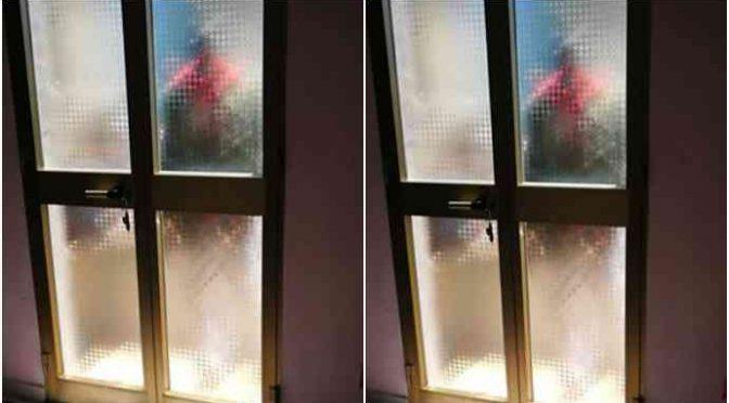 Immigrato terrorizza un intero condominio, non possono arrestarlo