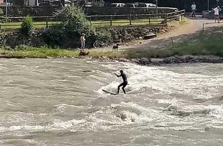 Con tavola surf sull'Isarco in piena a Bolzano