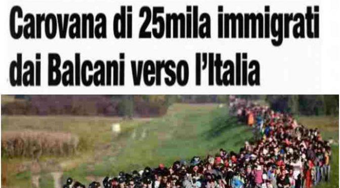 """Dai Balcani in Veneto isolato ceppo mutato. Zaia: """"È molto più aggressivo"""""""