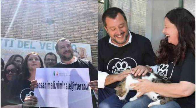 Salvini lancia piano per salvare cani e gatti: porti chiusi e cuori aperti