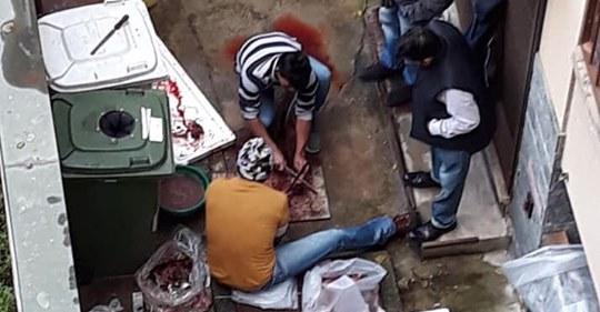 Immigrati scuoiano animale in cortile a Milano – FOTO