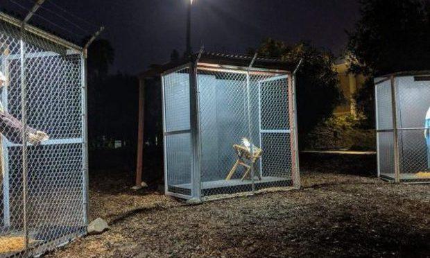 Presepe clandestino: Gesù finisce in gabbia