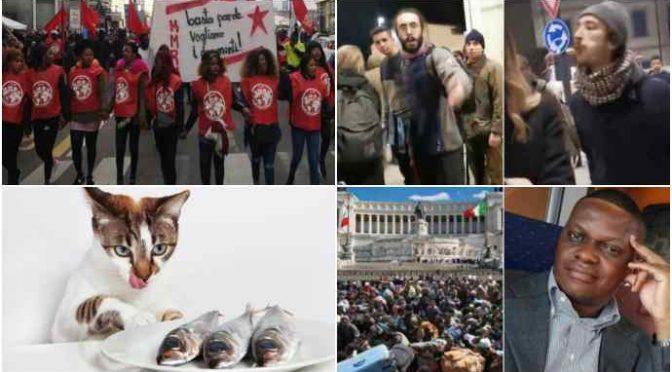 Sardine pidocchiose: solo 556 donazioni per manifestazione