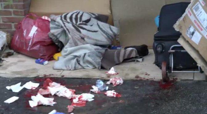 Accoltellata in strada a Torino: è stato il solito africano – VIDEO