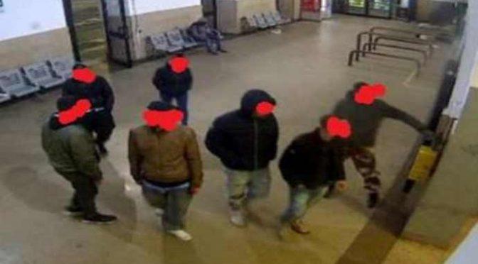 Baby gang di immigrati terrorizzano Bologna