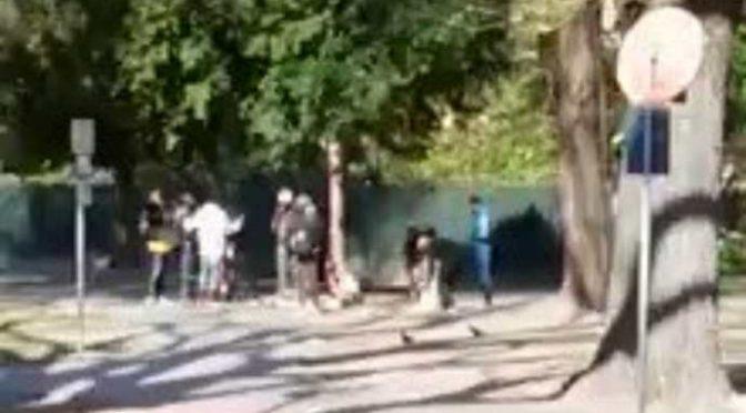 Parchi chiusi per gli italiani ma non per gli immigrati – VIDEO