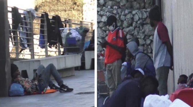 """Ong difende immigrati: """"Aggrediscono perché stressati, meno male non c'è più Salvini"""" – VIDEO"""