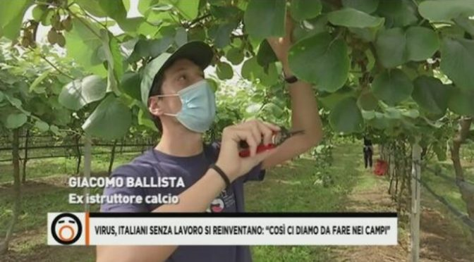 Boom italiani nei campi: fate vedere questo VIDEO a Bellanova