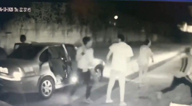 Spedizione punitiva: 9 rom armati di mazza devastano azienda italiana – VIDEO