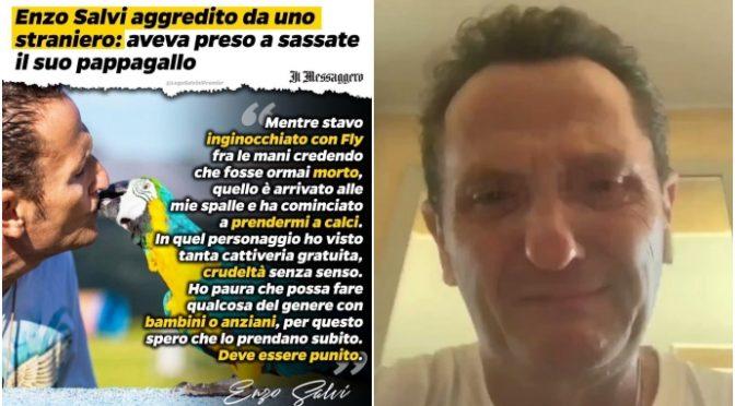"""Enzo Salvi in lacrime per il suo pappagallo in fin di vita: """"violenza brutale dall'africano"""" – VIDEO"""