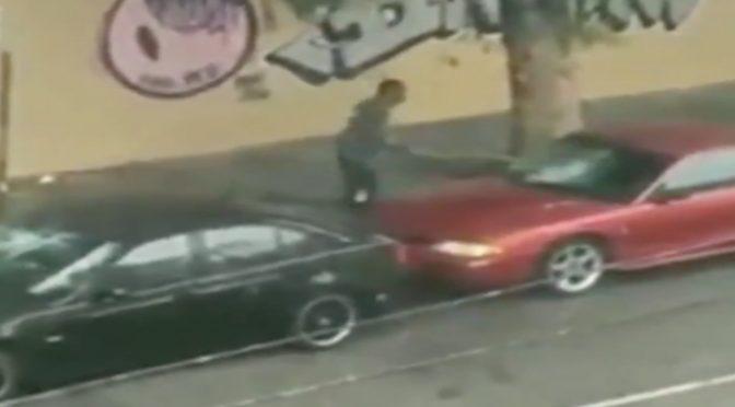 Tunisini sbarcano a Lampedusa e si divertono a distruggere auto in sosta
