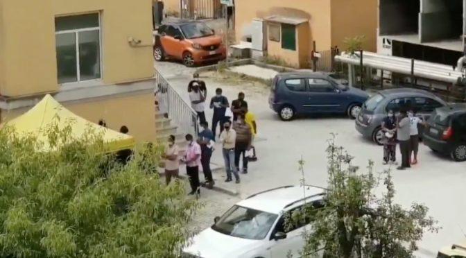 Tamponi gratis per gli immigrati: italiani devono pagare, tutti in fila a spese nostre  – VIDEO