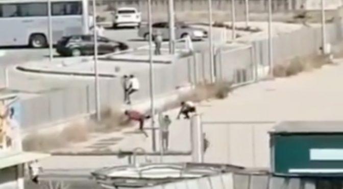 Fughe di massa di tunisini dalla quarantena: poliziotti pestati