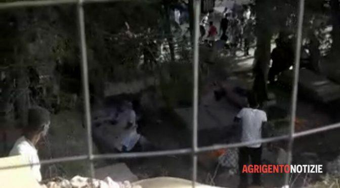"""Lampedusa, altre denunce contro gli immigrati: """"Arrostiscono i nostri cani e li mangiano"""" – VIDEO"""