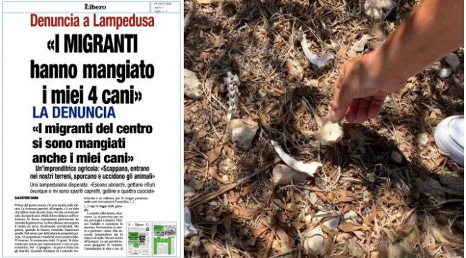 Lampedusa, confermato: ossa sono dei cani uccisi dai clandestini, proprietaria intimidita dal sindaco