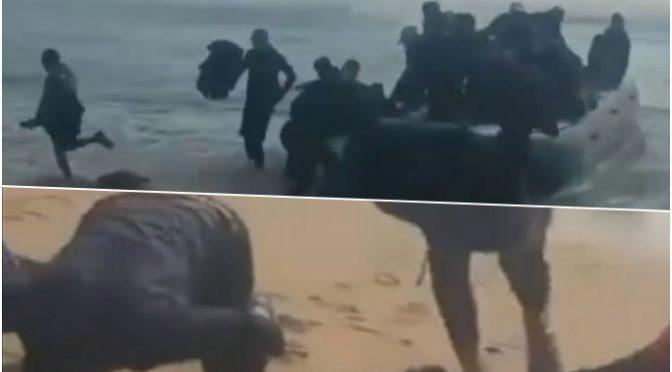 """Sbarcano sulle nostre spiagge in nome di """"Allah"""" – VIDEO"""