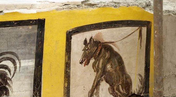 """Pompei, anche graffiti contro l'immigrato gay nel Termopolio: """"Invertito"""""""